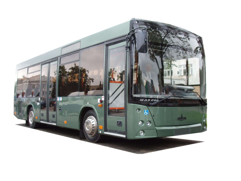 маз фото автобусы